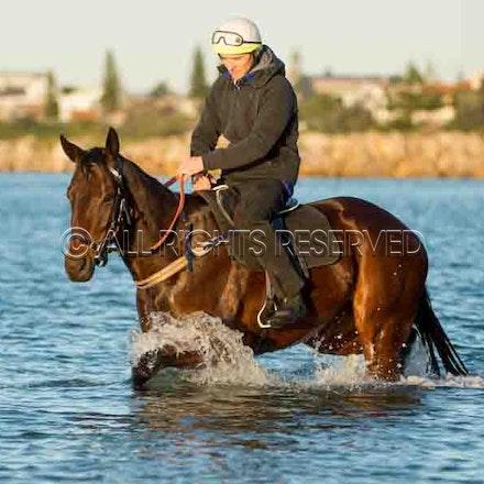 Winx, Ben Cadden, Botany Bay_20-08-17, Sharon Lee Chapman_0012