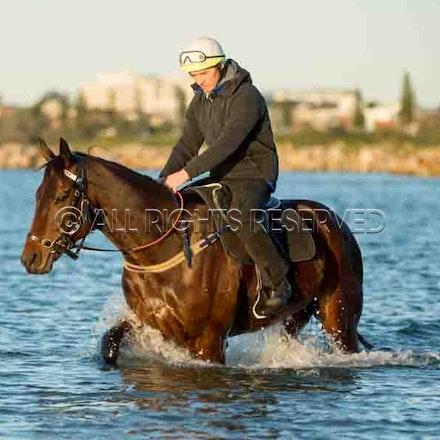 Winx, Ben Cadden, Botany Bay_20-08-17, Sharon Lee Chapman_0013