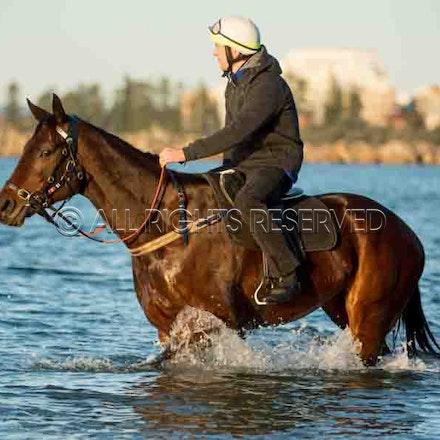 Winx, Ben Cadden, Botany Bay_20-08-17, Sharon Lee Chapman_0015