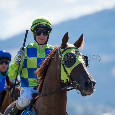Race 1, Treeconi, Troy Baker_09-02-18, Hobart, Sharon Lee Chapman_0020