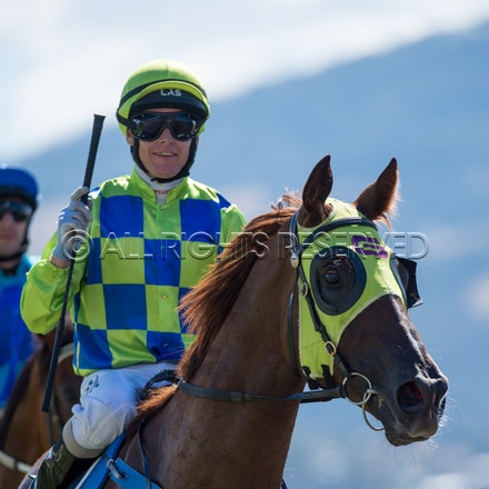 Race 1, Treeconi, Troy Baker_09-02-18, Hobart, Sharon Lee Chapman_0022