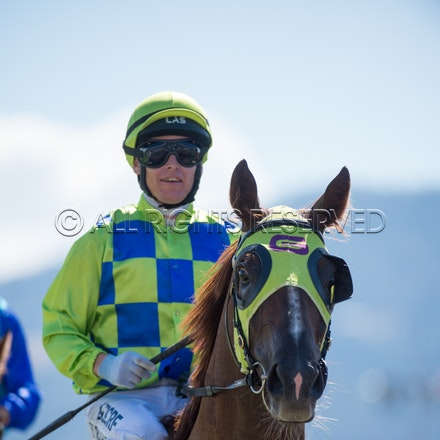 Race 1, Treeconi, Troy Baker_09-02-18, Hobart, Sharon Lee Chapman_0024