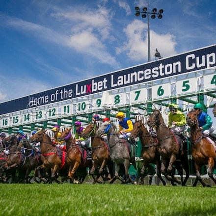 Race 1, Starting Gate_22-02-17, Launceston, Sharon Lee Chapman_0110