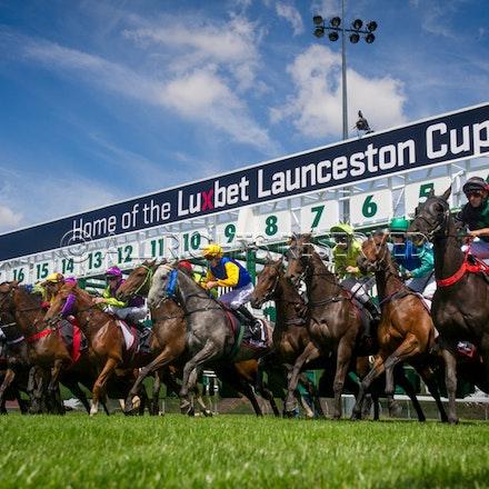 Race 1, Starting Gate_22-02-17, Launceston, Sharon Lee Chapman_0111