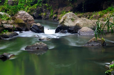 Petanu-River - East of Ubud in Bali, this is a powerful river in a deep ravine, the water is so clean you just want to dive, in but you'd be lost in an...