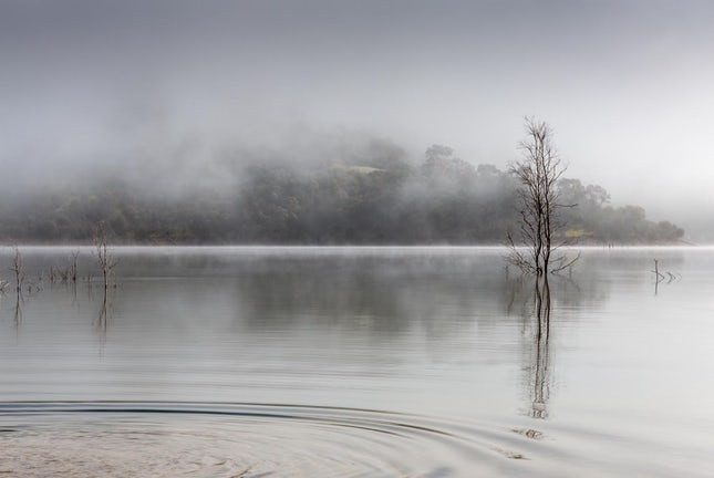 Zen 01 - Tranquility at Lake Eildon