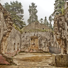 National Park Desierto de los Leones - The first National Park in Mexico City. An ex convenent that has ruins but you can still see the beauty it once...