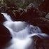 Smoky Mountain stream - Stream in Smoky Mountains National Park, near Gatlinburg, TN.