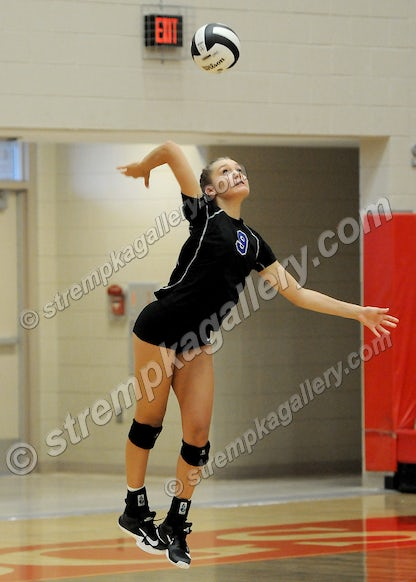 01_VB_LC_CP_DSC_8900 - Lake Central vs. Crown Point - 8/29/17