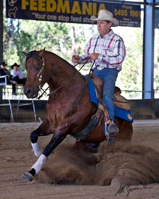 Quarter Horse Stallion Crown K Extra Chex_QLD - Quarter Horse Stallion Crown K Extra Chex slides to a stop at the Reining Horse Show in SE Queensland
