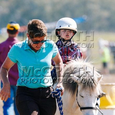 Led Stock Horse - RF2013