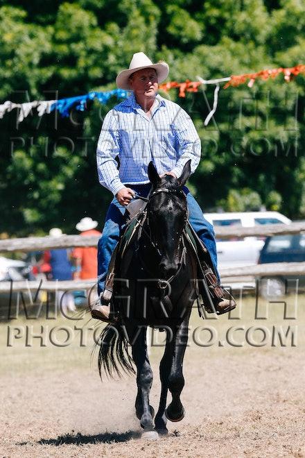 Working Stock Horse - Open - RF2013