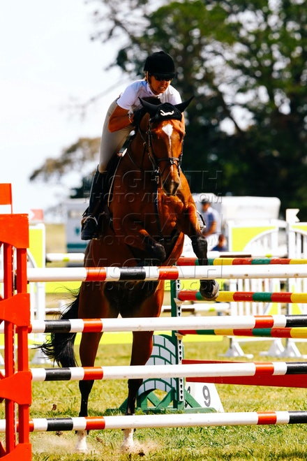 31- Gallery 1 - Equestrian NSW - Senior Championships - 31 - Equestrian NSW - Senior Championships