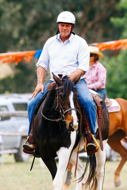 Working Stock Horse - Open - 2014