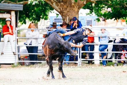 Steer Ride - RFG 2014 Online 6pm Tue 3rd