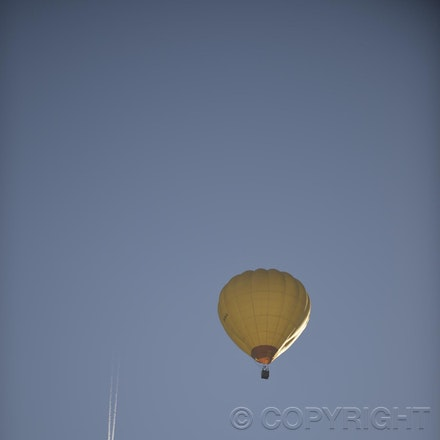 _DSC0062 - 2014 Australian Balloon Campionships, Canawindra, NSW