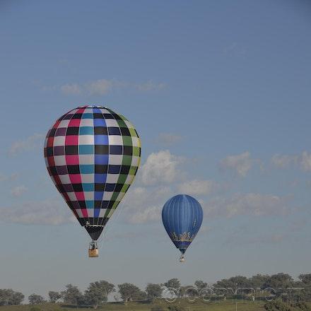 _DSC0214 - 2014 Australian Balloon Campionships, Canawindra, NSW