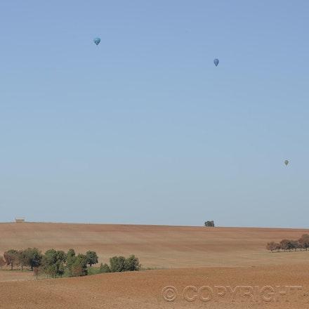 _DSC0343 - 2014 Australian Balloon Campionships, Canawindra, NSW