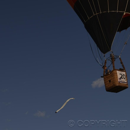 _DSC0257 - 2014 Australian Balloon Campionships, Canawindra, NSW