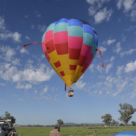 _DSC0486 - 2014 Australian Balloon Campionships, Canawindra, NSW