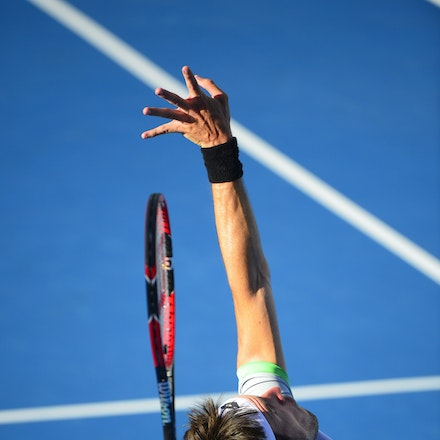 _PB10300 - 2015 14th January APIA International Sydney Tennis, day 4.