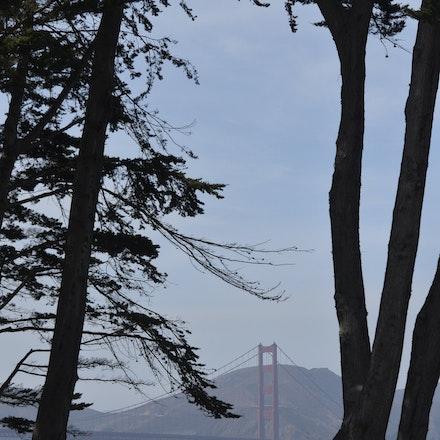_PB15539 - A day in San Francisco. Golden Gate Bridge.