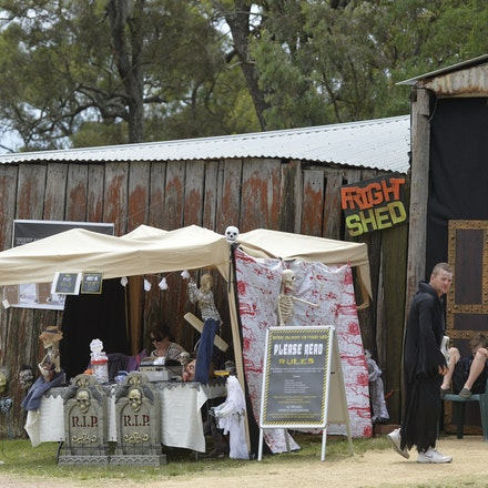 _PB11038 - 31st October 2015. Sydney Country Music Festival held at Bella Vista Farm