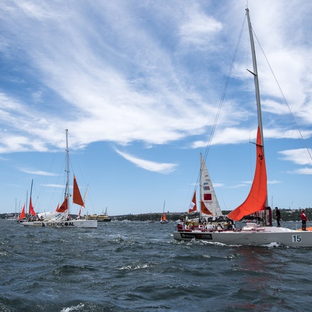 _DSC9380 - 2015 Rolex Sydney to Hobart start. Boats showing off there Storm Sails which is compulsory.