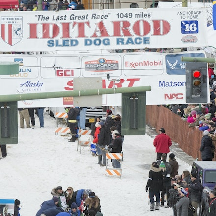 _PB10093 - 2016, March 5th. The Ceremonial start to the 2016 Itidarod, Dogsled race held in Anchorage. Dubbed as the Last Great Race. There was not enough...