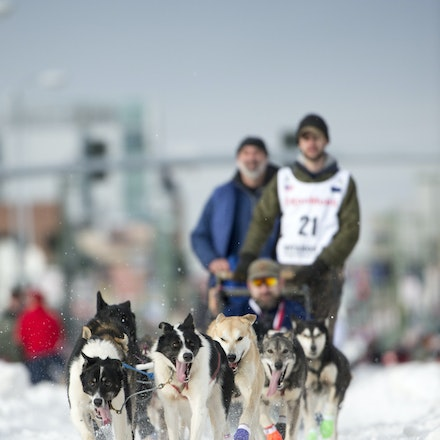 _PB19436 - 2016, March 5th. The Ceremonial start to the 2016 Itidarod, Dogsled race held in Anchorage. Dubbed as the Last Great Race. There was not enough...