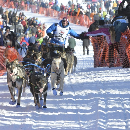 _PB11847 - 2016, March 6th. The start to the 2016 Itidarod, Dogsled race. Dubbed as the Last Great Race.  Mushers leave Willow for the start of the 1049...