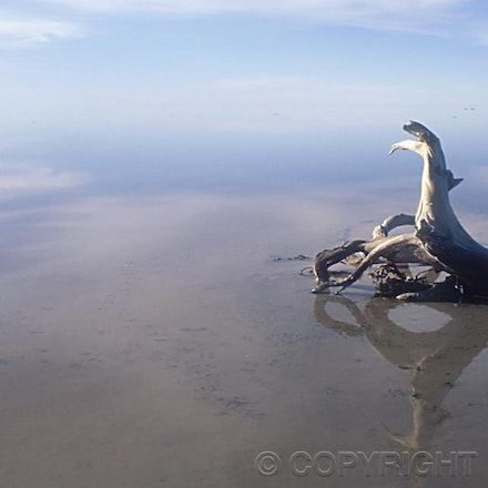 lakeeyre41
