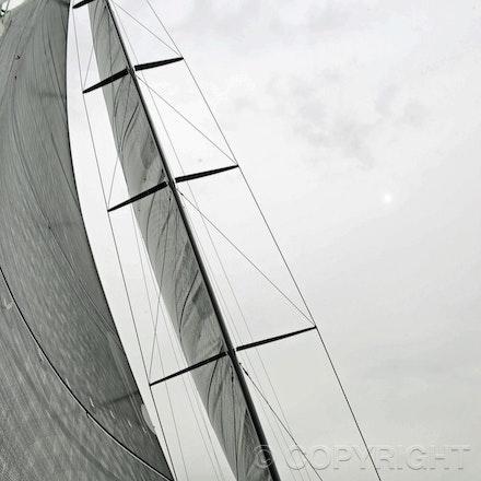 Blakeman_201212_Passage_4145 - 15/12/12, Sydney, Australia, Wild Thing launch