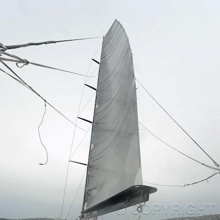 Blakeman_201212_Passage_4206 - 15/12/12, Sydney, Australia, Wild Thing launch