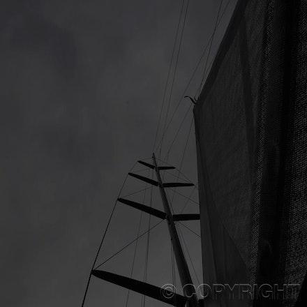 Blakeman_201212_Passage_4937 - 15/12/12, Sydney, Australia, Wild Thing launch