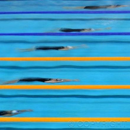 swimming8