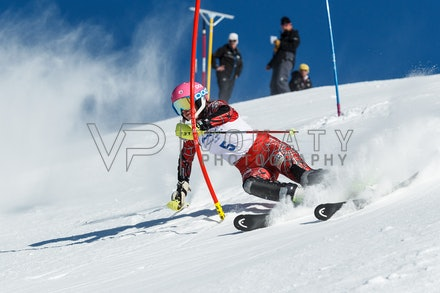 140813_FIS_SL1_3163 - Athlete competing in SSA FIS Slalom race on Hypertrail at Perisher, NSW (Australia) on August 13 2014. Jan Vokaty