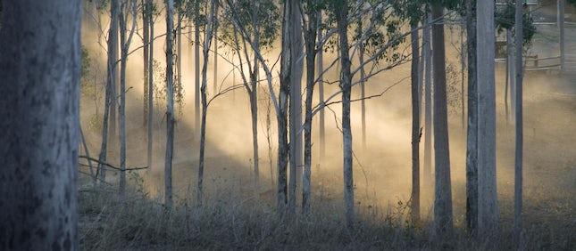 Spirits of Coffee Creek - Toowoomba, Australia.