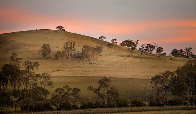 Country life.. - Armidale, NSW, Australia