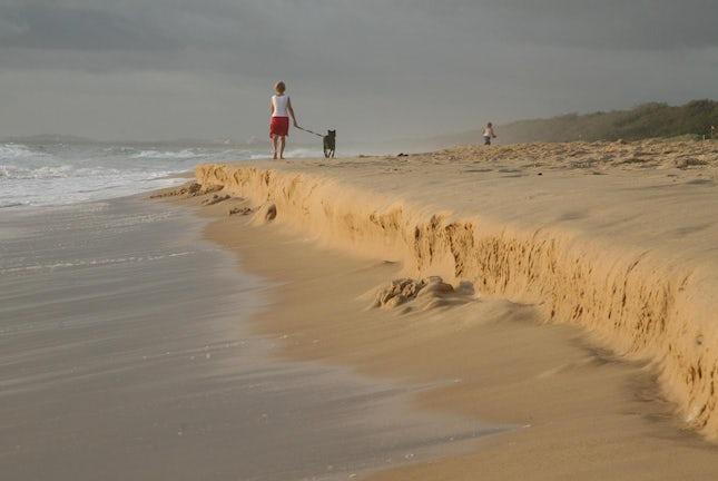Morning walks.. - Coolum, Queensland, Australia.