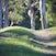 Beyond the rise... - New England Tablelands, NSW, Australia.