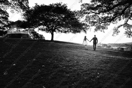 Internet 245 BW Melissa and Robert - 04th October 2013 - Observatory Hill - pregnancy photos sydney