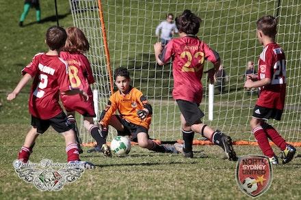 Internet 1467 North Sydney United FC - Tunks Park 15 June 2013 - childrens photography