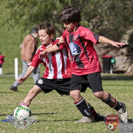 Internet 1490 North Sydney United FC - Tunks Park 15 June 2013 - children photography sydney