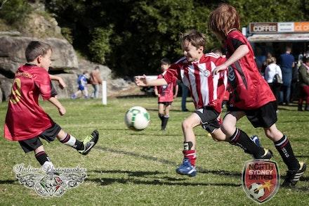 Internet 1517 North Sydney United FC - Tunks Park 15 June 2013 - children photography sydney