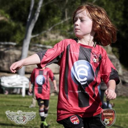 Internet 1666 North Sydney United FC - Tunks Park 15 June 2013 - school photographers sydney