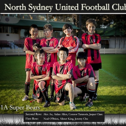 U11A Super Bears - For any information about available Packages, Pricing and delivery time, please contact us: info@landophotographer.com
