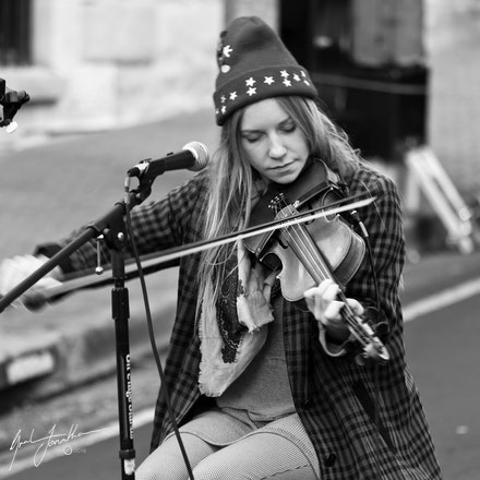 Tas Fiddle