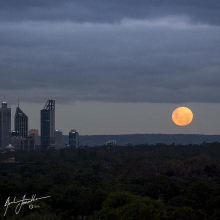 Perth Blood Moon GJP