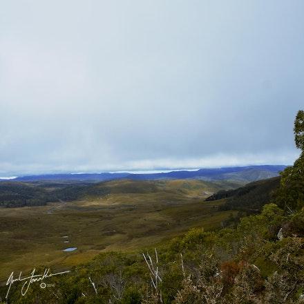 Tasmanian Valley